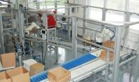 Oferty pracy w Anglii w fabryce kwiatów od zaraz Hull na linii produkcyjnej