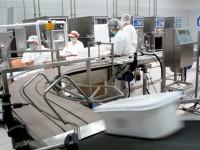 Pracownik produkcji oferta pracy w Niemczech bez znajomości języka Kolonia