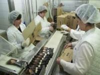 Dla kobiet aktualne ogłoszenie pracy w Holandii na produkcji dla skoczka