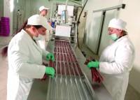 Praca Holanda dla kobiet na produkcji przy pakowaniu mięsa bez języka