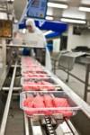 Praca w Niemczech bez języka na produkcji przy pakowaniu mięsa dla kobiet
