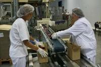 Holandia praca bez języka na produkcji przy pakowaniu artykułów spożywczych