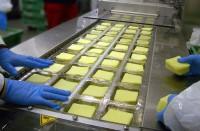 Praca Niemcy dla par na produkcji przy pakowaniu sera bez języka Drezno