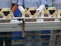 Sezonowa praca Holandia na linii produkcyjnej przy pakowaniu Roosendaal