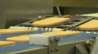 Oferta pracy w Norwegii bez języka od zaraz pakowanie sera dla Polaków Oslo