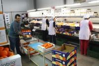 Praca w Holandii przy pakowaniu od zaraz bez znajomości języka Rotterdam
