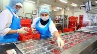 Niemcy praca bez języka dla par przy pakowaniu wędlin przy taśmie Hamburg