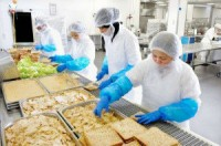 Praca Holandia na produkcji przy pakowaniu kanapek bez języka Tilburg