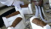 Dam pracę w Anglii na produkcji przy pakowaniu czekoladek od zaraz Londyn
