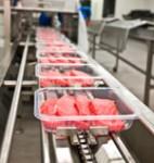 Od zaraz oferta pracy w Anglii na produkcji mięsnej bez języka Llanelli