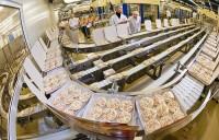 Od zaraz Holandia praca na produkcji dań gotowych w fabryce Emmeloord 2015