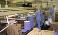 Od zaraz oferta pracy w Anglii na produkcji przy pakowaniu jajek Worcester