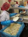 Praca w Holandii produkcja sałatek od zaraz w Helmond bez znajomości języka