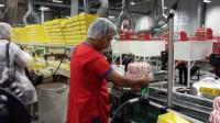 Praca Holandia na produkcji przy pakowaniu ciastek bez języka od zaraz Haga