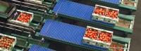 Pakowanie pomidorów oferta pracy w Holandii bez znajomości języka od zaraz Haga