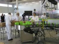 Produkcja kosmetyków praca w Danii bez języka od zaraz dla par Kopenhaga