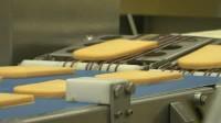Praca w Holandii bez znajomości języka na produkcji pakowanie serów Woerden