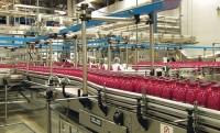 Praca w Norwegii na produkcji soków tłoczonych bez języka od zaraz Vestfold