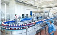 Holandia praca pakowanie ketchupów od zaraz bez znajomości języka Wijchen