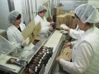 Od zaraz oferta pracy w Niemczech bez znajomości języka na produkcji lodów Hannover