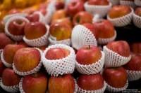 Od zaraz Szwecja praca sezonowa pakowanie owoców bez znajomości języka 2015