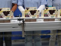 Praca w Anglii na produkcji spożywczej przy pakowaniu jedzenia Londyn