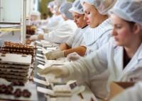 Praca w Danii bez znajomości języka Kopenhaga pakowanie czekoladek od zaraz