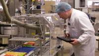 Dla par praca w Norwegii na produkcji mrożonek od zaraz bez języka Bergen