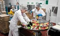 Dam pracę w Anglii na produkcji spożywczej Laurencekirk bez języka przy linii produkcyjnej