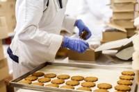 Oferta pracy w Holandii na produkcji pakowanie ciastek bez języka Zwolle