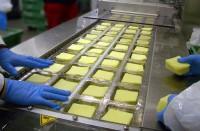 Praca w Niemczech bez języka przy pakowaniu sera od zaraz Hamburg
