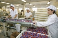 Praca Holandia w fabryce przy pakowaniu słodyczy dla kobiet bez języka