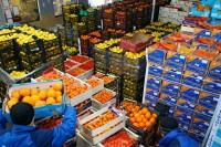 Dam pracę w Szwecji Norrköping od zaraz bez języka pakowanie owoców