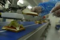 Od zaraz bez języka Holandia praca dla Polaków na produkcji kanapek Alphen