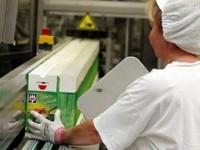 Ogłoszenie pracy w Anglii bez znajomości języka od zaraz Chichester produkcja żywności