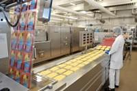 Holandia praca od zaraz bez znajomości języka przy produkcji sera w Almere