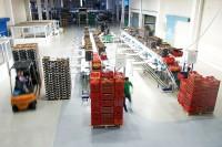 Oferta fizycznej pracy w Danii od zaraz bez języka Kopenhaga sortowanie warzyw