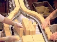 Praca Niemcy bez znajomości języka dla par pakowanie sera Magdeburg