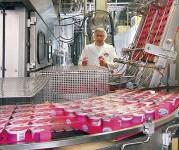 Praca w Niemczech bez znajomości języka Düsseldorf produkcja jogurtów
