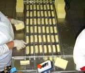 Praca w Niemczech bez znajomości języka dla par pakowanie sera Magdeburg