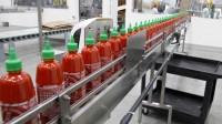 Ogłoszenie pracy w Holandii od zaraz produkcja sosów bez znajomości języka Udenhout