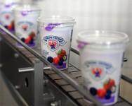 Bez znajomości języka oferta pracy w Danii produkcja jogurtów od zaraz 2017 Kopenhaga