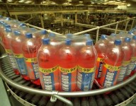 Praca w Szwecji od zaraz na produkcji napojów bez znajomości języka Göteborg