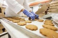Dla par Norwegia praca 2017 od zaraz pakowanie ciastek bez języka Fredrikstad