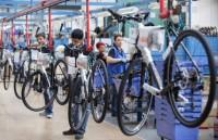 Holandia praca bez znajomości języka na produkcji rowerów od zaraz Flevoland