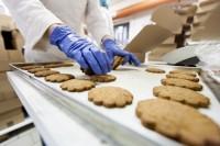 Ogłoszenie pracy w Holandii bez języka na produkcji ciastek od zaraz Ochten