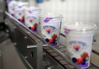 Niemcy praca od zaraz na produkcji jogurtów bez znajomości języka Stuttgart
